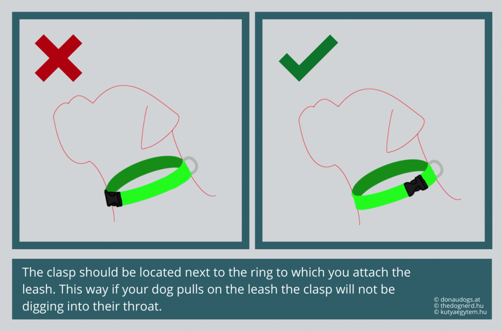 the clasp should be located next to the ring