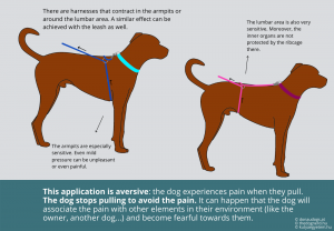 harnesses that tighter around the lumbar area or around the armipts are aversive (dogs stop pulling to avoid discomfort/pain)