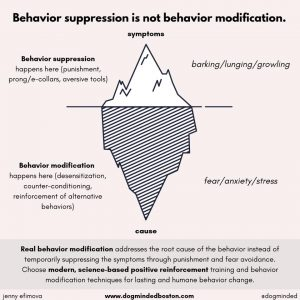 behavior suppression works by punishing symptoms (barking, lunging), behavior modification seeks to address the underlying causes (stress, pain...)
