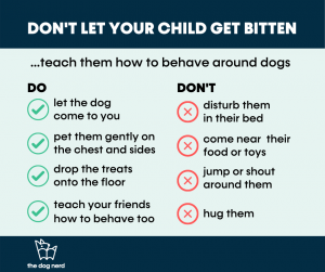 do's and don'ts around dogs - let them come to you, pet them gently on sides, drop treats on the floor, don't disturb them i their bed, don't come near their toys, don't hug them